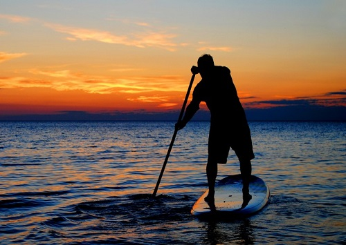 sup stand-up-paddle